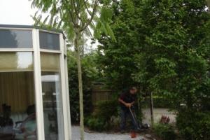 tuinrenovatie ouderkerk (10)