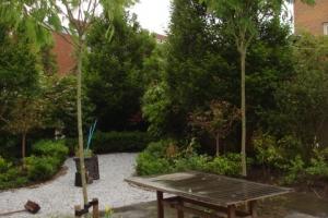 tuinrenovatie ouderkerk (9)