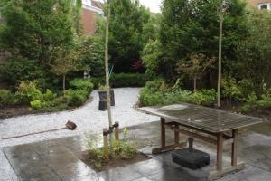 tuinrenovatie ouderkerk (8)